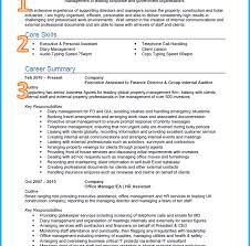 resume format customer service executive job profiles vs job descriptions profileples for resumes resume template good personal job profiles