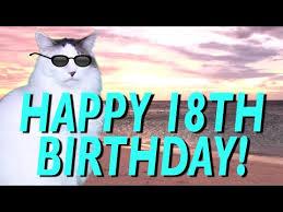 18th Birthday Memes - happy 18th birthday epic cat happy birthday song youtube