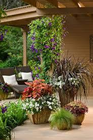 outdoor plants bradford greenhouses