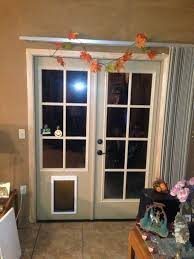 Exterior Pet Door Pet Ready Exterior Doors How To Put A Door In Glass Large For