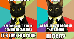 Business Cat Memes - all business cat memes business best of the funny meme