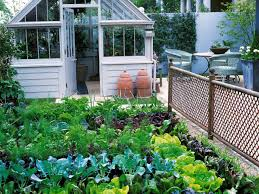 outdoor and patio backyard vegetable garden combined with