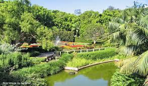 Botanic Gardens Brisbane City Brisbane Picnic Spots