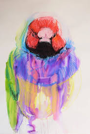 Italy U2014 Central Intelligence Agency by 9 Best Macaws Images On Pinterest Parrots Australian Parrots
