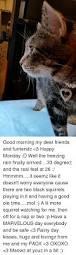 25 best memes about bad cat bad cat memes