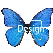 blue morpho butterfly transparent png digital file butterfly