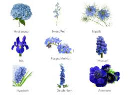 blue flowers for wedding sheets to wedding flowers weddingplanner co uk
