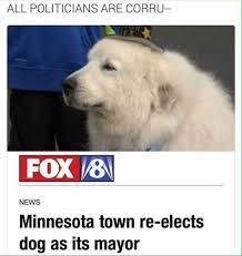 Minnesota Memes - dopl3r com memes all politicians are corru fox 8 news