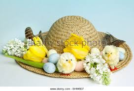Easter Eggs Decorated Like Animals by Easter Chicks Eggs Stock Photos U0026 Easter Chicks Eggs Stock Images