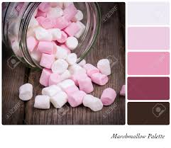 marshmallow color palette with complimentary swatches stock photo