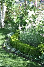 Landscaping Ideas Front Yard by Top 25 Best Front Yard Hedges Ideas On Pinterest Front Yard