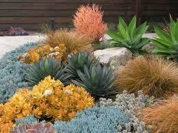 Drought Tolerant Landscaping Ideas Drought Tolerant Garden Design Astrid Gaiser Garden Design Llc