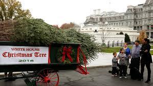 greets last white house tree