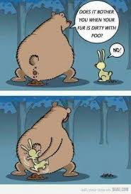bear rabbit talking cartoons share funny