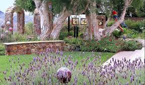 Mountain Landscaping Ideas San Diego Ca Landscape Design U0026 Sustainable Landscape Black
