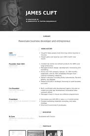 ceo resume template ceo resume winkd co