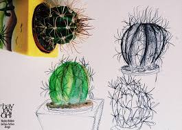 spiky green cactus friend u2013 sketchbook peek 10 hayley holden