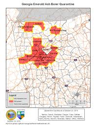 Georgia State University Map by Emerald Ash Borer Georgia Invasive Species Task Force