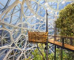 canopy amazon take a look inside amazon s spheres as they get set to open the