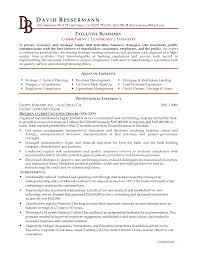 Sample Summary Resume by An Executive Summary Example Mughals