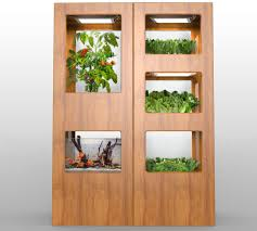 Indoor Vegetable Garden Kit by Grove Labs Wants To Put A Tiny Farm In Your Kitchen The Verge