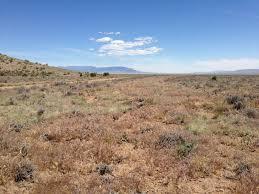 Nevada vegetaion images Western watersheds project litigates 145 000 acre vegetation jpg