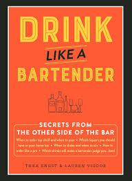 drink like a bartender thea engst lauren vigdor 9781507204115
