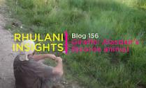 www.rhulani.com/uploads/files/Screenshot_2021-01-1...