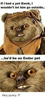 Ewok Memes - if i had a pet ewok i wouldn t let him go outside he d be an endor
