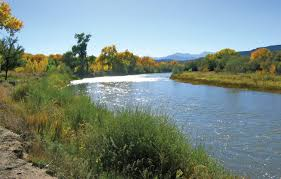 programs natural resources native plant communities new mexico the new mexico river stewardship program