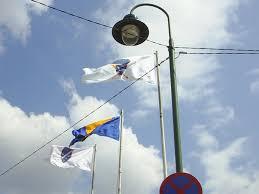 Flag Of Bosnia I Love Bosnia Volim Te Bosnian Flags Arbih War Time Flag And