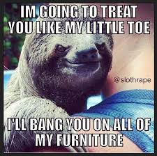 Funny Sloth Pictures Meme - 74 best inappropriately hilarious sloth images on pinterest