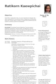 Finance Resume Sample by Finanzkontrolleur Cv Beispiel Visualcv Lebenslauf Muster Datenbank