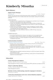 project manager resume digital project manager resume sles visualcv shalomhouse us