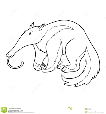 coloring book anteater stock vector image 51506811