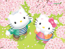 kitty review download