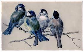 vintage image blue birds on branch the graphics