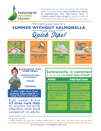 summer without salmonella basic food safety pinterest food