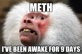 Monkey Meme - meth monkey memes quickmeme