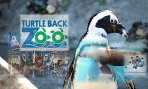 turtle back zoo light show 2017 great deal two admissions for just 15 at nj s turtle back zoo in