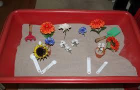 seedlings nursery 10 preschool sensory bin ideas