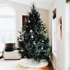 hello christmas tree what a christmas tree living room hello christmas hello
