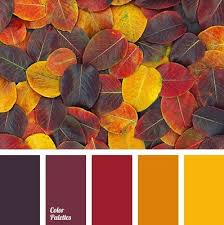 fall color pallette 25 color palettes for brilliant fall designs psprint blog