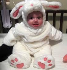 4 Month Halloween Costume Halloween Baby Contest Bunny Rabbit Sydney