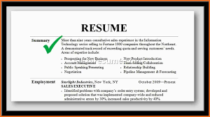professional summary exles for resume professional summary sle artresume sle