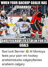 Hockey Goalie Memes - when your backup goalie has diarrhea ba and youhavetostayin for 8