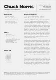 creative resume templates for mac resume templates mac cool resume templates for mac the