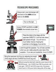 compound light microscope facts how to use a microscope homeschool and life science