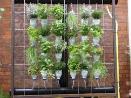 14 best living green walls images on pinterest vertical gardens