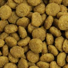eukanuba veterinary diets renal for cats dog food nutrition and